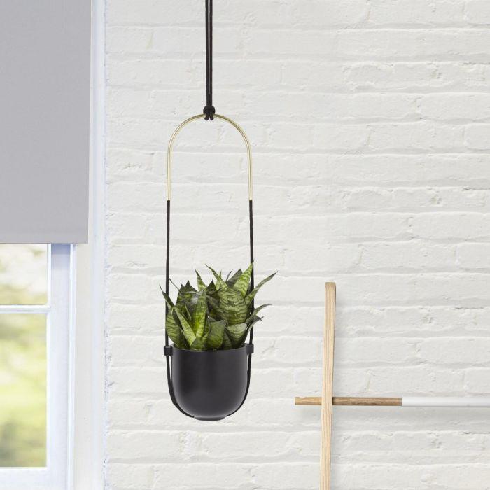 Umbra Bolo Hanging Planter
